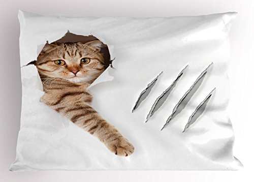 Animal Pillow Sham by Ambesonne, Funny Cat in Wallpaper Hole with Claw Scratches Playful Kitten Cute Pet Picture, Decorative Standard King Size Printed Pillowcase, 36 X 20 Inches, Brown White - Fabric Sham
