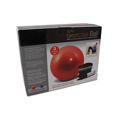 Exercise Ball With Pump 12Pcs by FindingKing