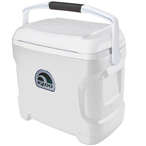 Igloo Marine Cooler Ultra 30 cuartos de galón: Amazon.es: Deportes ...