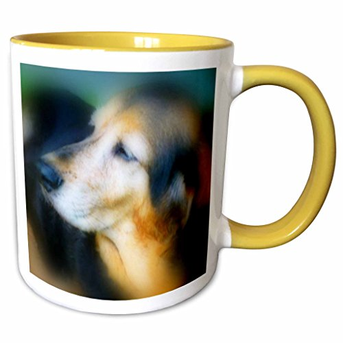 Hound Dog Sweet Tea - 3dRose Renderly Yours Dogs - Sweet Old Hound Dog - 11oz Two-Tone Yellow Mug (mug_111085_8)