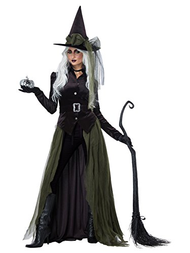 California Costumes Women's Gothic Witch-Adult Costume, Black/Green -