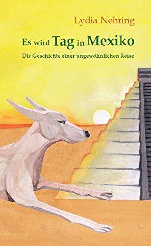 Es wird Tag in Mexiko: Geschichte einer ungewöhnlichen Reise Taschenbuch – 1. September 2010 Lydia Nehring Joseph Klingenberg Haakon Auster Autumnus Verlag