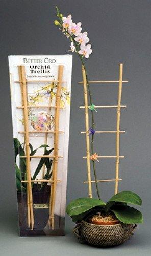 Sun Bulb 53251 Better Gro Bamboo Trellis