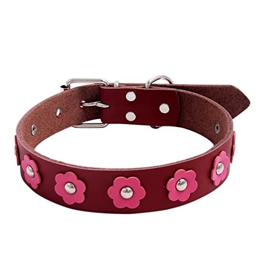 SRI Adjustable Dog Collar Red Medium