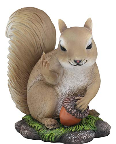 Ebros Gift Large Rude Squirrel Pointing Middle Finger with Acorn Nutty  Welcome Guest Greeter Statue 10