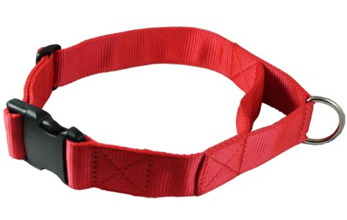 Adjustable Nylon Dog Collar with Handle 1.75