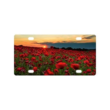 Amazon hot sale discount car tag amazing beautiful poppies hot sale discount car tag amazing beautiful poppies poppy flowers durable aluminum car license plate 12quot mightylinksfo