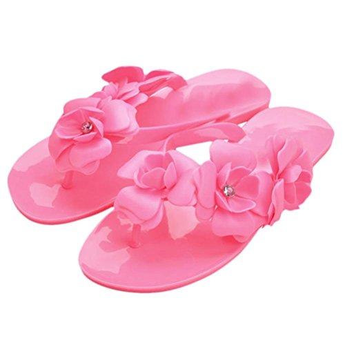 Hunputa Summer Boho Flower Women's Sandals Flat Heel Flip Flops Beach Slippers Femal Shoes (Pink, 40(US 8.5))