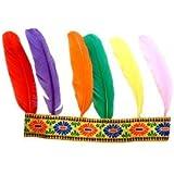 Bandeau indien 6 plumes
