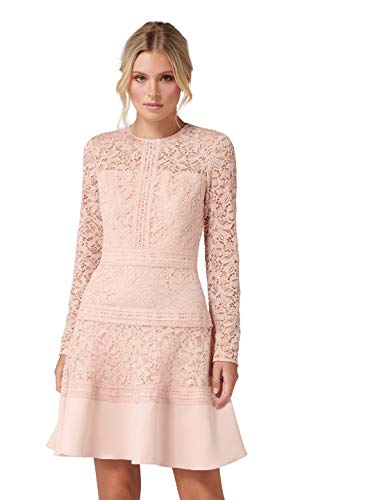(Ever New Womens Marion Spliced Lace Dress)