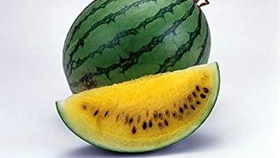 Watermelon Yellow Seeds Rare Janosik Yanosik Vegetable for Planting Giant Non GMO 10 Seeds
