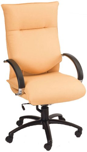 amazon com ergocraft bellagia executive chair e 66581 office rh amazon com