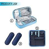 Goldwheat Portable Insulin Cooler Travel Case