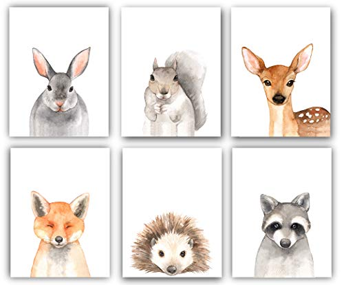 Woodland Animals Nursery Decor Watercolor Art - Set of 6 (UNFRAMED) 8x10 Prints (Option 2)