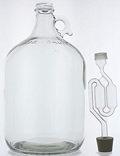 1 gal Glass Wine