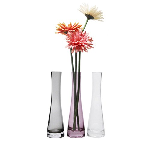 - Rachel's Choice Small Glass Vase For Flower Bud Home Decor Clear 8.5 Inch, Pack of 3