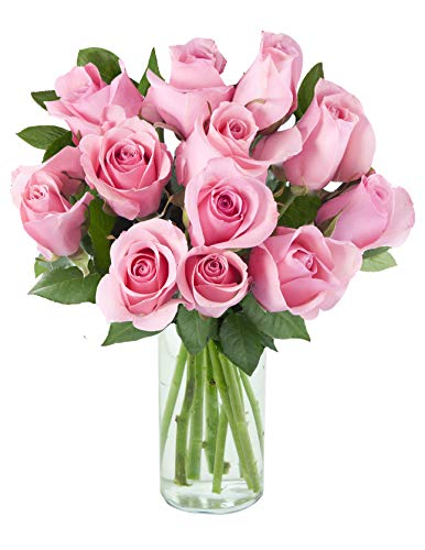 12 Fresh Cut Pink Roses by Arabella Bouquets with Glass Vase | with Each Purchase a Donation Will Be Made to The Cancer Research Institute