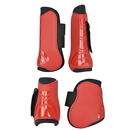 - Moylor Open Front Tendon and Fetlock Boots Set for Horse Pack of 4