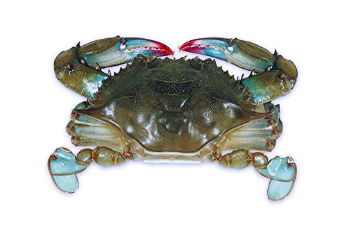 Handy Seafood Raw Domestic Soft Shell Crabs (12 Ct. Hotels) - Frozen