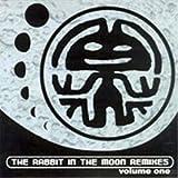 Rabbit in the Moon Remixes, Vol. 1 [Vinyl]
