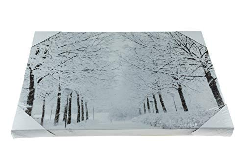 Snowy Path Light Up Poster | Sparkling Canvas Wall Art