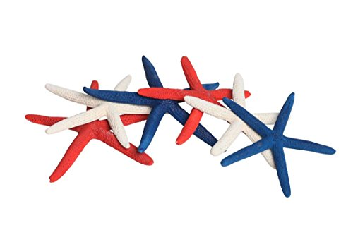 Finger (Pencil) Starfish Color Mix - 9 Large Pieces 6-8
