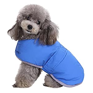 Queenmore Cold Weather Dog Coats Loft and Reversible Winter Fleece Dog Vest Waterproof Pet Jacket Available in Extra Small, Small, Medium, Large and Extra Large sizes (Blue, XS)