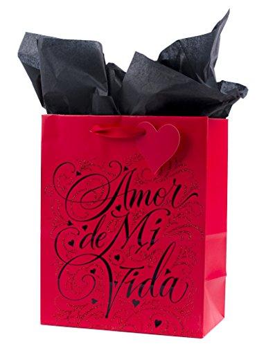 Hallmark VIDA Valentine's Day Spanish-Language Medium Gift Bag with Tissue Paper (Amor de Mi Vida)