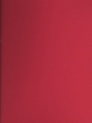 Canson Mi-Teintes Tinted Paper (Red) - 19 In. x 25 In. 4 pcs