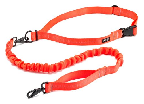 Stunt Puppy Runner Hands Free Orange