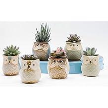 Mini 6PCS Owl Pot Ceramic Flowing Glaze Base Serial Set Succulent Plant Pot Cactus Plant Pot Flower Pot Container Planter Bonsai Pots With A Hole By Weierken.