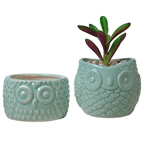 Bird Planter (Set of 2 Mid-Century-Style Ceramic Owl Mini Succulent Planters, Flower & Cactus Pots, Light Blue)