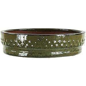 Bote para bonsáis 25 x 25 x 6 cm, diseño de redondo de cerámica esmaltada, color verde