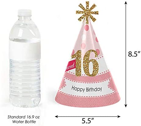 Big Dot of Happiness Sweet 16 - Cone Happy Birthday Party Hats for Kids and Adults - Set of 8 (Standard Size)