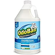 Best OdoBan Eliminator Disinfectant Concentrate Fresh