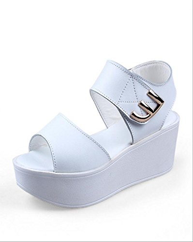Sandalias Simple Inferior Zapatos De Verano 1 Planos Espesor Mzg Mujer USxqffB