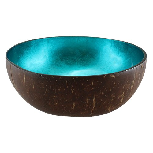 Hawaiin Flowers Blue (World Buyers Natural Coconut Bowl 5