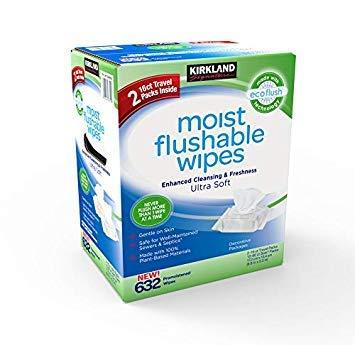 Kirkland Signature Moist Flushable Enhanced Cleansing & Freshness Ultra Soft