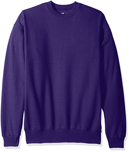 Hanes Men's EcoSmart Fleece Sweatshirt, Purple, Large ()