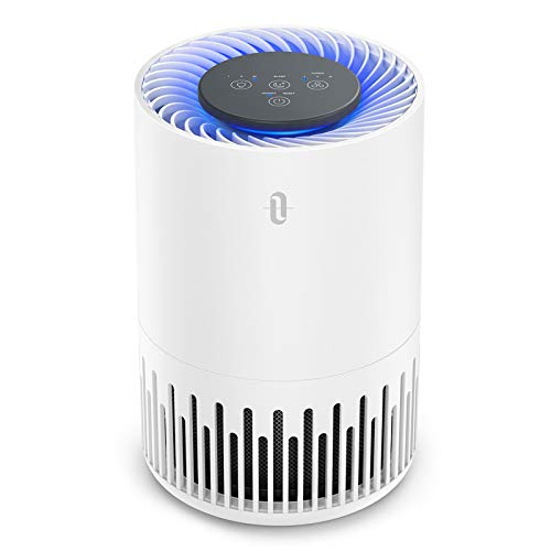 TaoTronics HEPA Air Purifier for Home, Allergens Smoke Pollen Pets Hair, Desktop Air Cleaner with True HEPA Filter, Sleep Mode, Night Light, Odors Dust, Bedroom Office