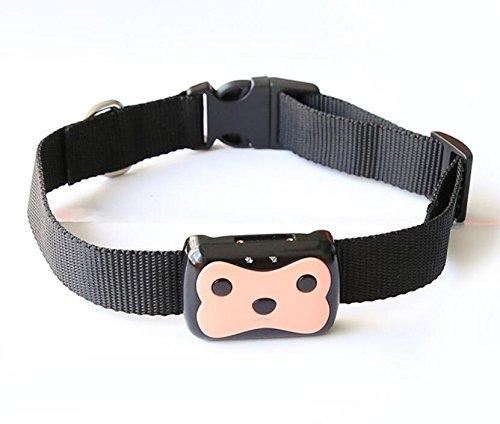 Camonity Mini Pet GPS Tracker Waterproof Smart GPS Tracker With Collar For Pets Cat Dog Anti-lost GSM GPRS Locator Free APP
