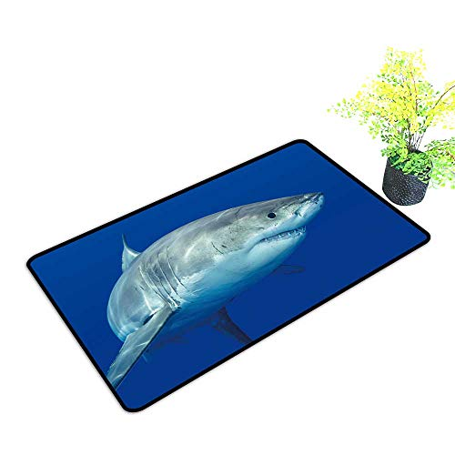 Super Absorbs Mud Doormat A Great White Shark Swimming at Guadalupe Island Looking for Food. No Odor Durable Anti-Slip W39 x H19 INCH