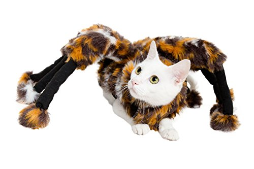 Spider Dog Costume - Cat Costume - Pet Costumes by Pet Krewe by Pet Krewe (Image #2)