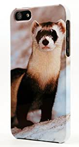 Endangered Black Footed Ferret Dimensional Case Fits iPhone 5 or iPhone 5s