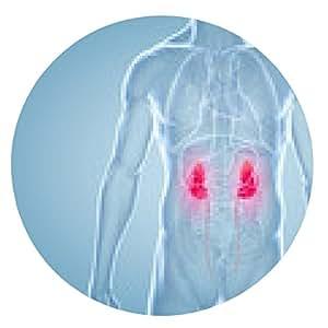 alfombrilla de ratón Riñón, enfermedad renal - ilustración anatómica 3D - ronda - 20cm