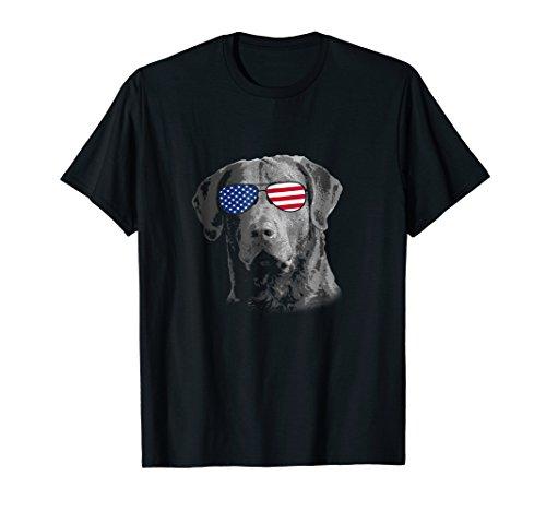Patriotic Chesapeake Bay Retriever Dog Merica T-Shirt 4th