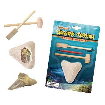 Buried Treasure Digs (Shark Tooth Dig)