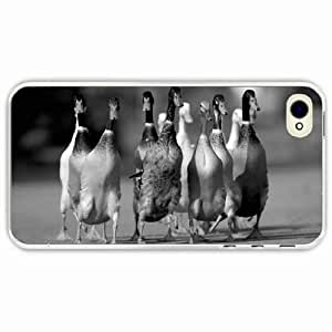 iPhone 4 4S Black Hardshell Case ducks flock road Transparent Desin Images Protector Back Cover by runtopwell
