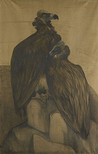 Classic Art Poster - Two Arabian Vultures, Theo van Hoytema, 1885 - 1917 13'' x 19'' by VintPrint