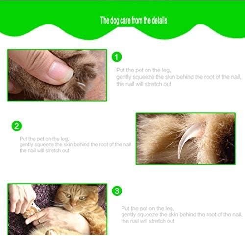Límite-MX Pet Grooming Scissors,Cortaúñas y reCortador de uñas para mascotas, Tijeras de uñas para mascotas Paw acicalado podadoras con protector de seguridad para evitar el exceso de corte para cachorro perrito gatito (Rosa) 6